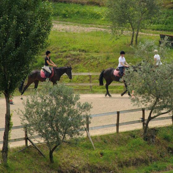 Centro Ippico • Fattoria degli Usignoli • Toscana