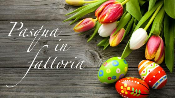 Offerta di Pasqua, Agriturismo Toscana